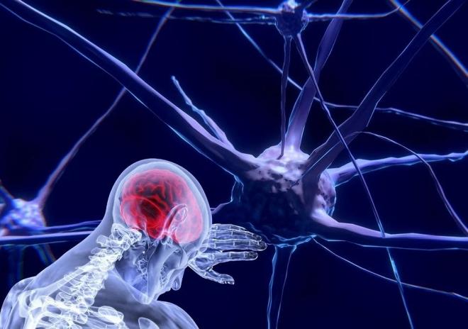 Hőhatással az idegsejtek működése befolyásolható