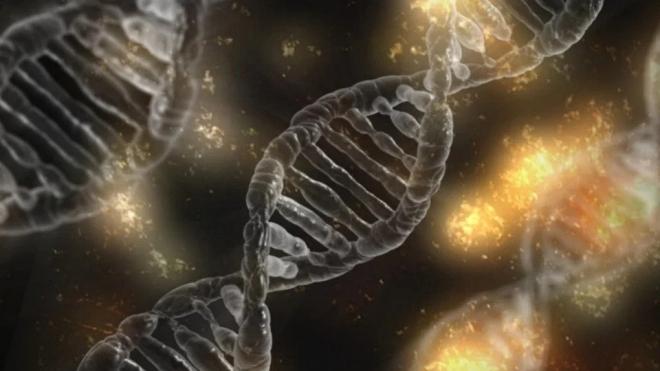 A nátha elleni T-sejtek befolyásolhatják a koronavírusra adott válaszreakciót