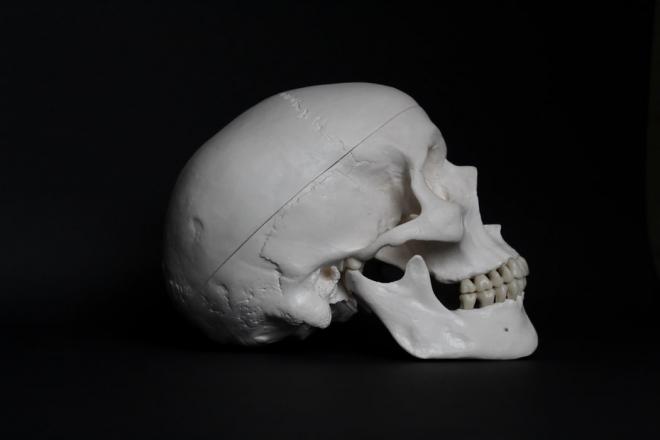 Mit ettek az ember elődei 2-3 millió éve?