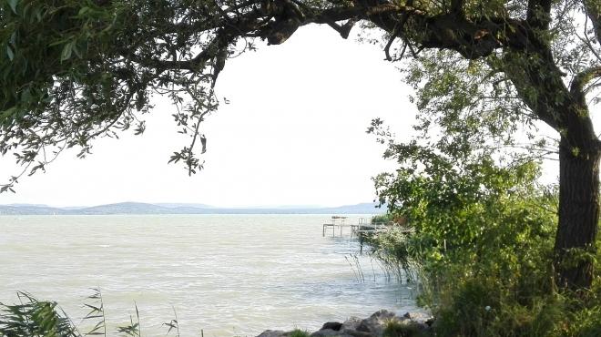 A hőhullámok hozzájárulnak a Balaton algásodásához