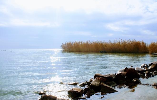 A nagy magyar tavak védelméért küzdenek
