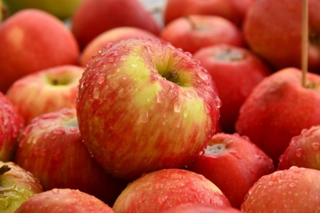 Egyre hatékonyabbá válhat az almanemesítés folyamata