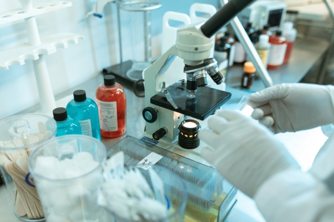 Fonálféreg segíthet egy ritka rákbetegség gyógyításában