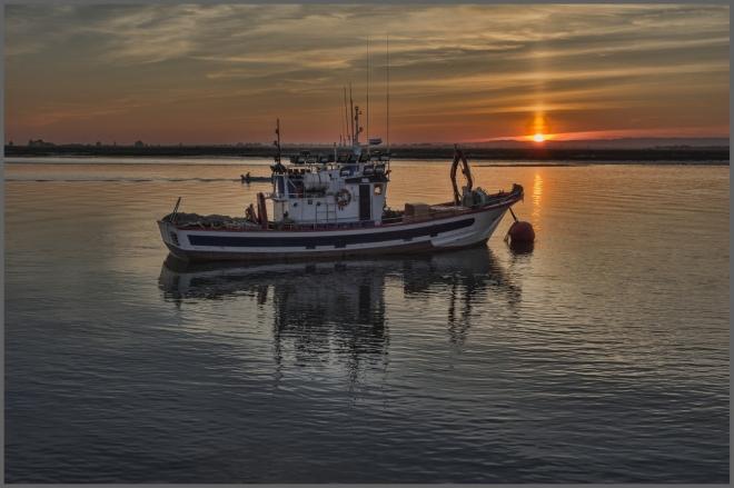 A bálnákra is veszélyt jelentenek a halászhálók