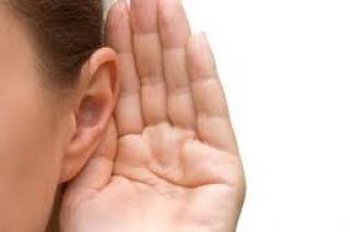 Hogyan működik a hallásunk?