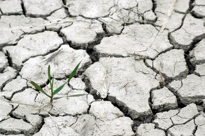 Egyre szárazabbak az európai nyarak