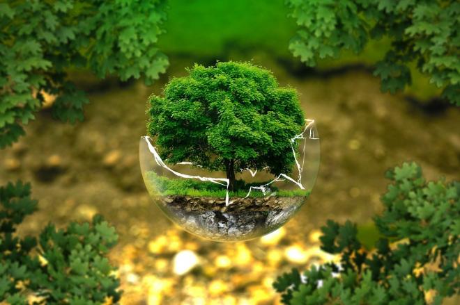 Miként alakul a környezettudatosságunk?
