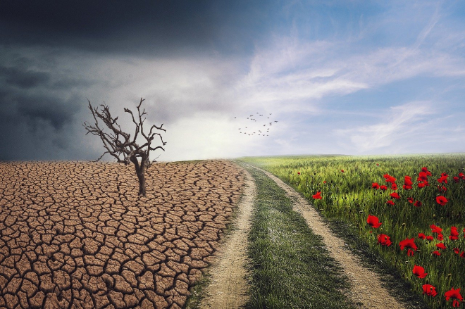Csak az összefogás menthet meg az éghajlatváltozástól