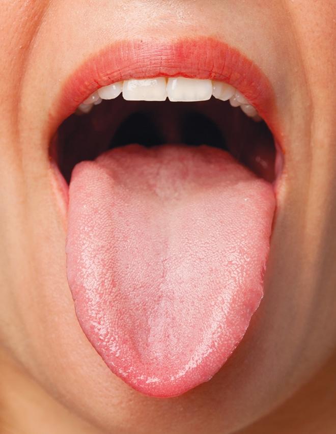 nyelv papillák
