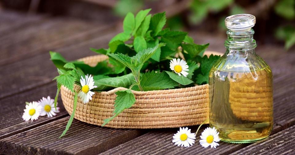 A gyógynövények kezelésével)